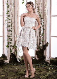 Elegant Lace Strapless Neckline Short A-line Homecoming Dress With Belt & Bowknot (SOD97936)