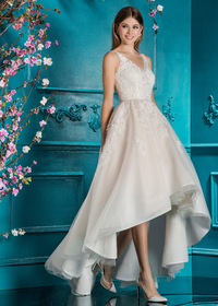 Wonderful Tulle V-neck Neckline Hi-lo A-line Wedding Dress With Lace Appliques (WWD39830)