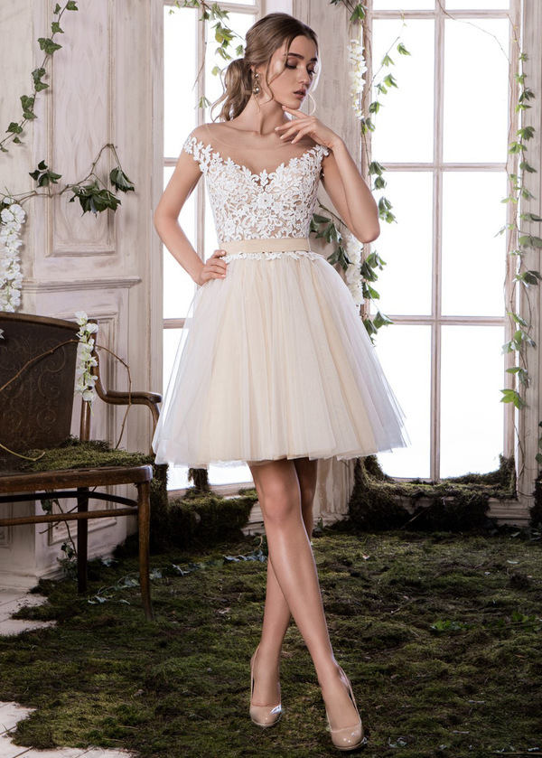 Elegant Tulle Scoop Neckline Cap Sleeves Short A-line Homecoming Dress With Lace Appliques (SOD14602)